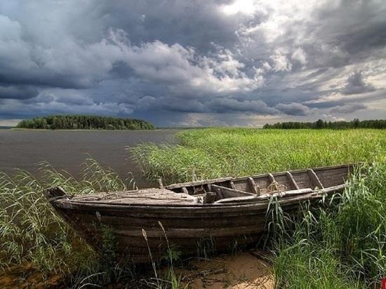 Псковичка: у самой кромки Чудского озера начали строить дачи. Комментарий власти
