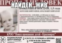 Под Красноярском нашли пропавшего парня с пасынком