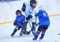 Два района в Чувашии получат гранты на развитие детского хоккея