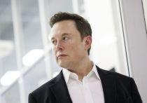 Илон Маск открывает экономику в самоволку