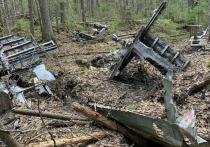 Эхо войны: в Солигаличском районе Костромской области найдены обломки самолет B-25 Mitchell