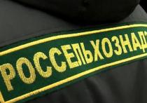 Управление Россельхознадзора по Тверской области проконтролировало экспорт 155 партий продукции животного происхождения и кормов