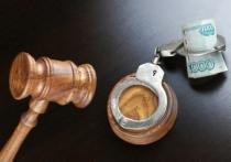 В Новосибирской области задержан подозреваемый в ограблении сельсовета
