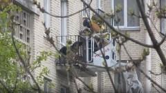 Спасатели сняли с балкона 7 этажа запертого хозяевами щенка