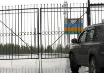 Стадион Ноябрьска закрыли из-за несоблюдения социальной дистанции