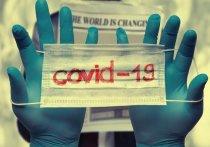 От 1 до 91 года: на Кубани 92 новых случая COVID