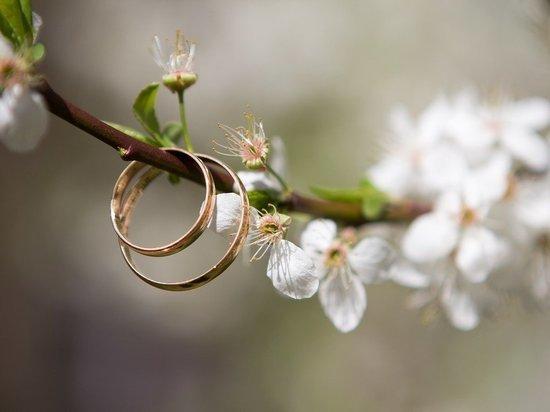 Почти в 4 раза уменьшилось количество разводов в апреле в Забайкалье