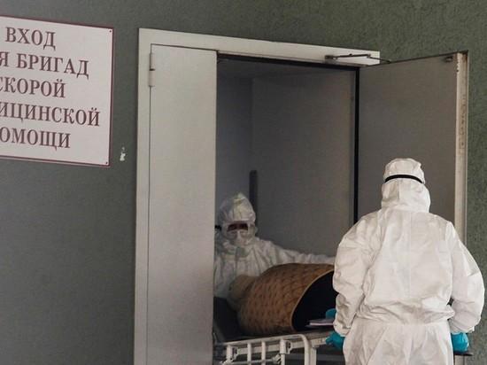 Выяснилось, почему медикам не выплачивают обещанные Путиным деньги
