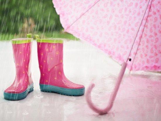 В Челябинской области похолодало до +17, местами дожди