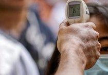 Германия: измерения температуры в аэропортах неэффективны