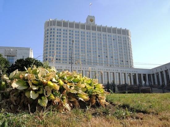 В России утвердили процедуру приостановки деятельности организаций
