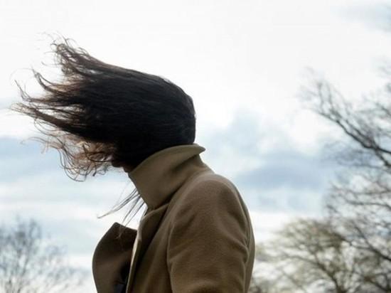 Курян предупредили о штормовом ветре