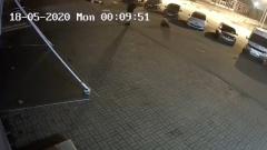 Опубликовано видео нападения дикого медведя на мужчину в Ярославле