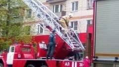 В Калуге спасатели помогли котенку