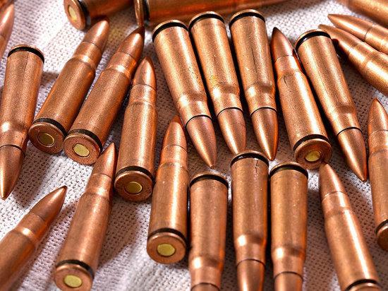 Житель Тверской области осужден за незаконное хранение боеприпасов