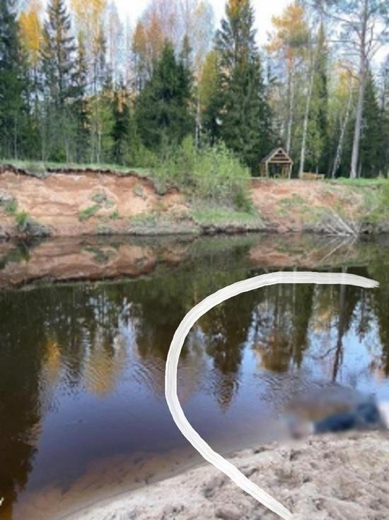 Провинциальный детектив: пожилой костромич найден утонувшим у самого берега