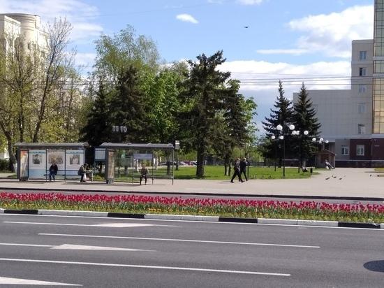 За нарушение самоизоляции жителей региона 33 оштрафовали почти на миллион рублей