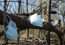 Глава думского Комитета по экологии и охране окружающей среды Владимир Бурматов («ЕР») настаивает: использованные гражданами для защиты от коронавируса маски и перчатки опасны, их надо утилизировать по особой схеме, и платить за это должны продавцы такого рода товаров