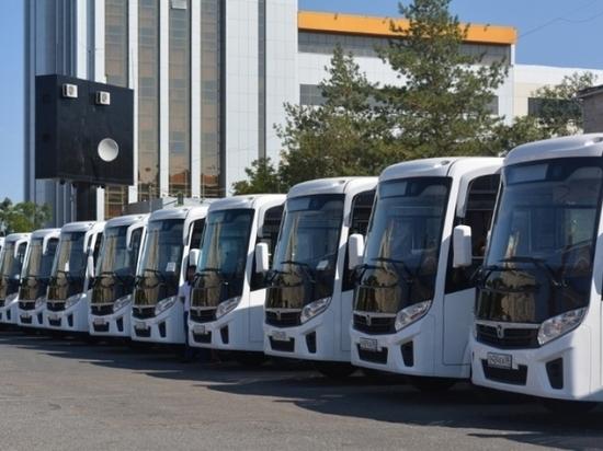 В калмыцкой столице на маршруты выйдут муниципальные автобусы