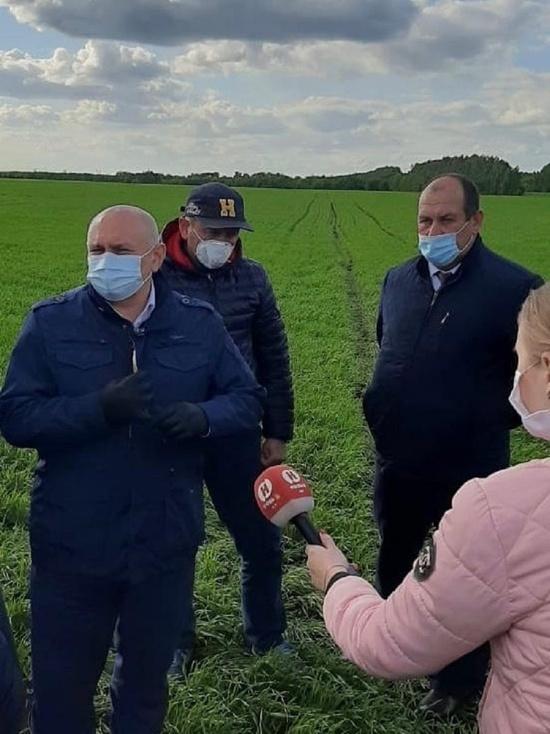 В Тамбовской области хорошие перспективы на урожай