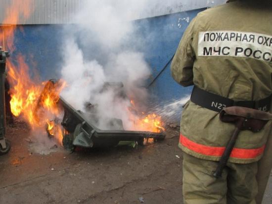 В Новосибирской области пожарные чаще всего тушили мусор и сухую траву