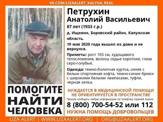 Дедушка 87-ми лет пропал в Калужской области