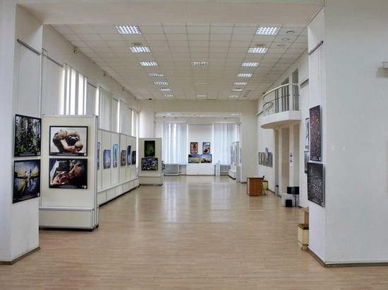 Более 50 тысяч владимирцев стали участниками «Ночи музеев» онлайн