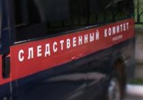 История с обрезанием 9-летней девочки в Ингушетии получила продолжение