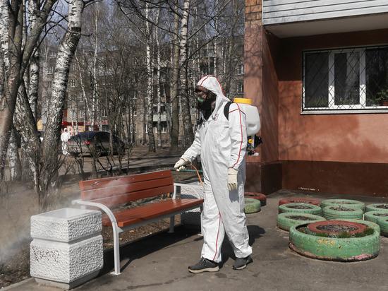 Десять тысяч домов продезинфицировали в Нижнем Новгороде