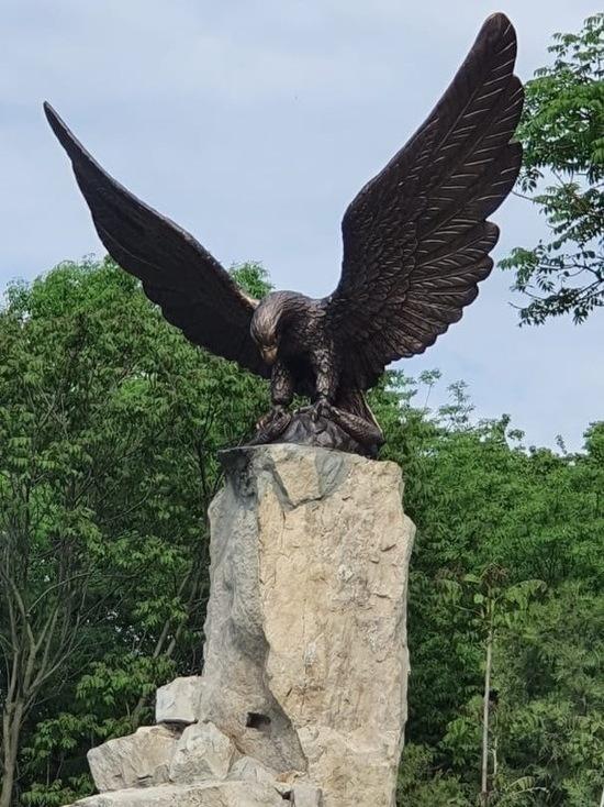 Самый большой орел Кавминвод поселился в Железноводске