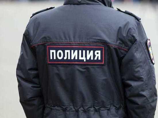 Двое мужчин напали на полицейских в Московском районе