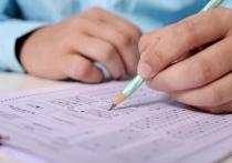 Псковский чиновник: ЕГЭ – самый оптимальный способ проверки знаний