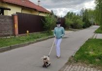 «Тетя, твоя собачка давно сдохла!»: как одинокие люди борются с самоизоляцией