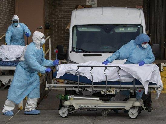 Данные по коронавирусу в Хабаровском крае на утро 22 мая