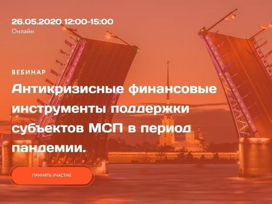 Антикризисные меры господдержки малого и среднего бизнеса в Петербурге обсудят 26 мая