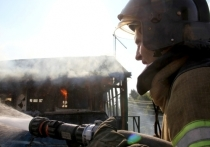 В Липецке с начала года произошло 459 пожаров