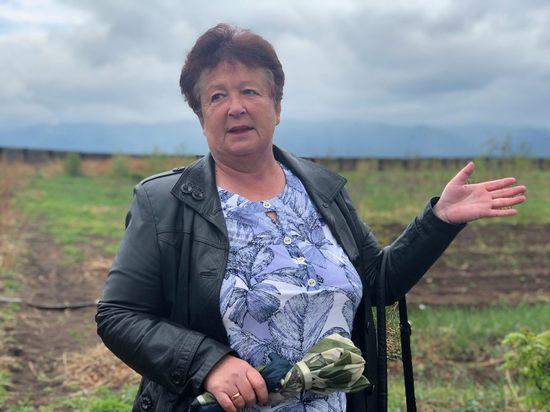 Бурятский фермер поставляет саженцы ягод по всей России и за рубеж