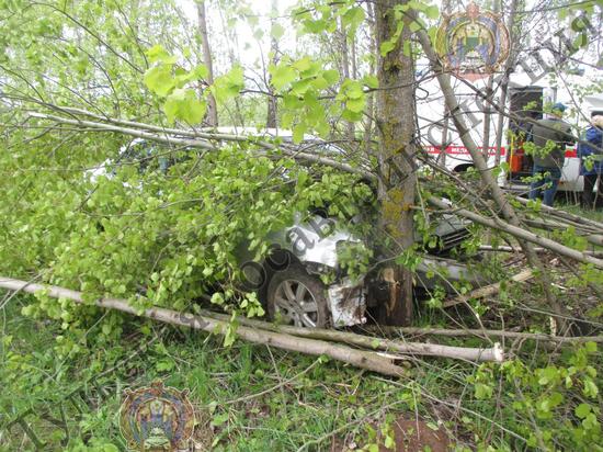 Под Тулой  водитель Volkswagen Polo врезалась в дерево