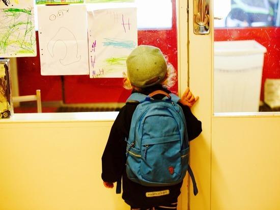 Германия: Нормализация работы школ невозможна и после летних каникул