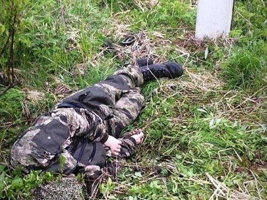 В Костромской области от удара тока погиб мужчина, который хотел похитить электрические провода