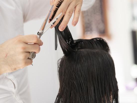 Раскрыты цены на черном рынке парикмахеров
