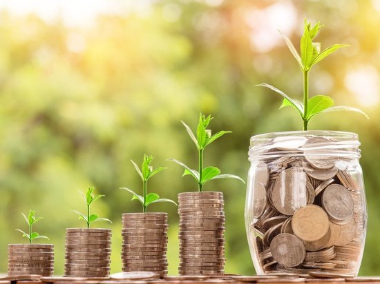 13,5 тысяч брянских бизнесменов могут получить помощь