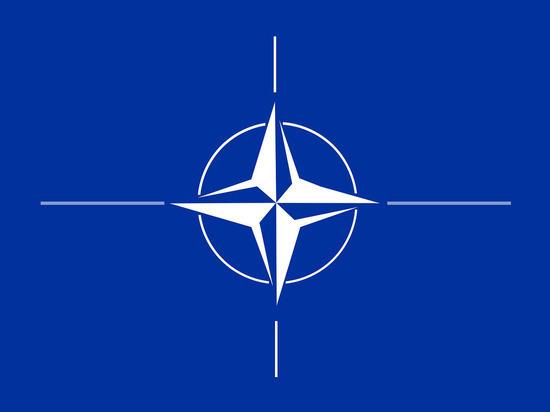 Союзники по НАТО призвали США не выходить из ДОН