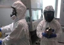 В Томске от коронавируса за сутки умерло трое человек