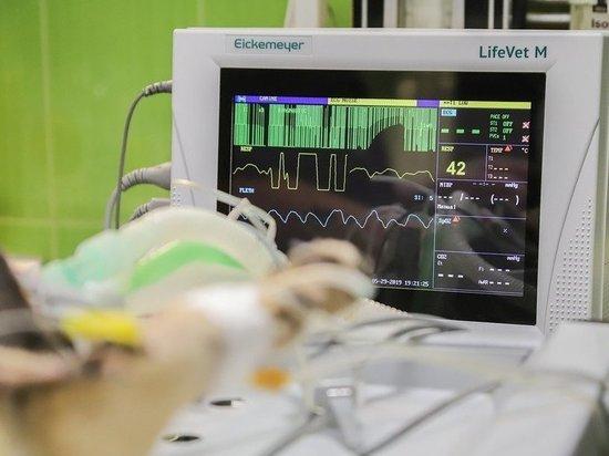 В анапском технополисе «Эра» представили веб-сервис для диагностики сердечно-сосудистых заболеваний
