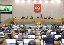 Госдума приняла и направила в Совет Федерации закон, который дает правительству чрезвычайное право до конца 2020 года самостоятельно регулировать отношения между работниками и работодателями, не внося изменения в Трудовой кодекс