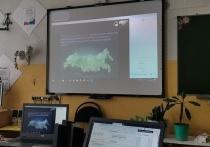 Студенты колледжа в Тверской области прошли этап предзащиты дипломов онлайн