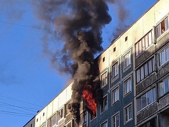При пожаре на Северном проспекте погибли два человека