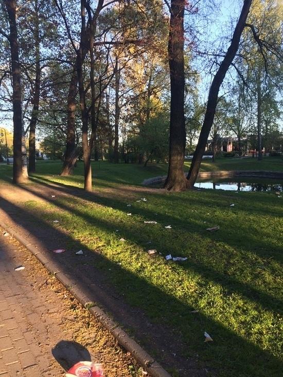 Петербургские улицы утопают в упаковках из-под фастфуда