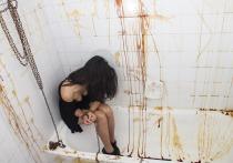 В Барнауле раскрыто дело об изнасиловании пятилетней давности